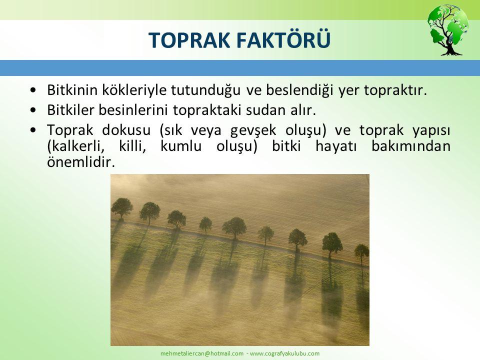 mehmetaliercan@hotmail.com - www.cografyakulubu.com TOPRAK FAKTÖRÜ •Bitkinin kökleriyle tutunduğu ve beslendiği yer topraktır. •Bitkiler besinlerini t