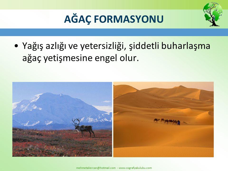 mehmetaliercan@hotmail.com - www.cografyakulubu.com AĞAÇ FORMASYONU •Yağış azlığı ve yetersizliği, şiddetli buharlaşma ağaç yetişmesine engel olur.
