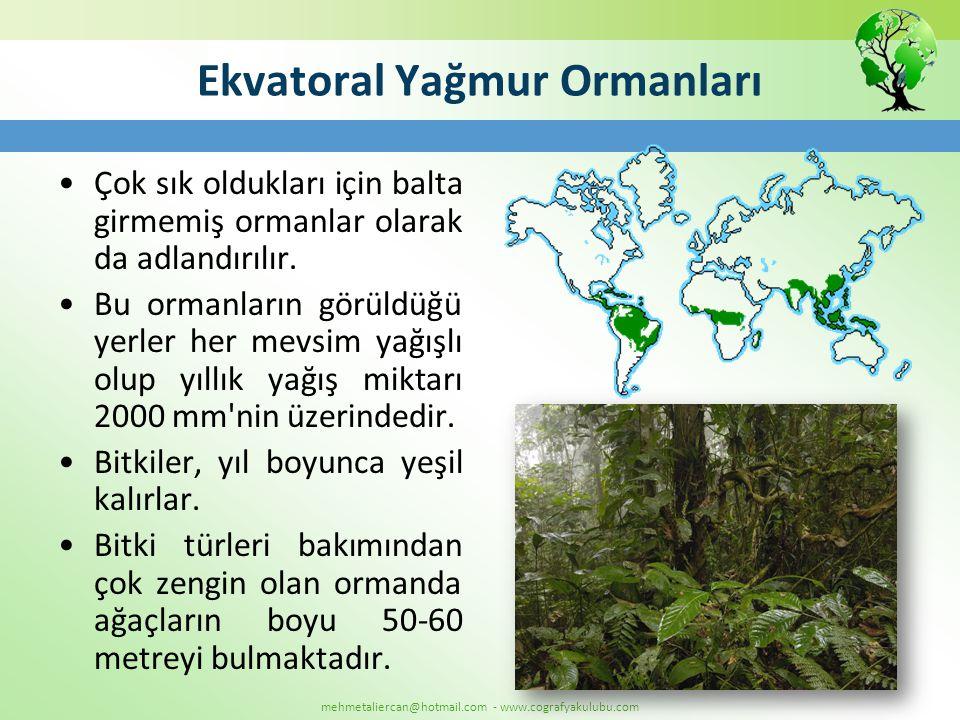 mehmetaliercan@hotmail.com - www.cografyakulubu.com Ekvatoral Yağmur Ormanları •Çok sık oldukları için balta girmemiş ormanlar olarak da adlandırılır.