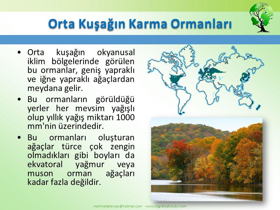 mehmetaliercan@hotmail.com - www.cografyakulubu.com Orta Kuşağın Karma Ormanları •Orta kuşağın okyanusal iklim bölgelerinde görülen bu ormanlar, geniş