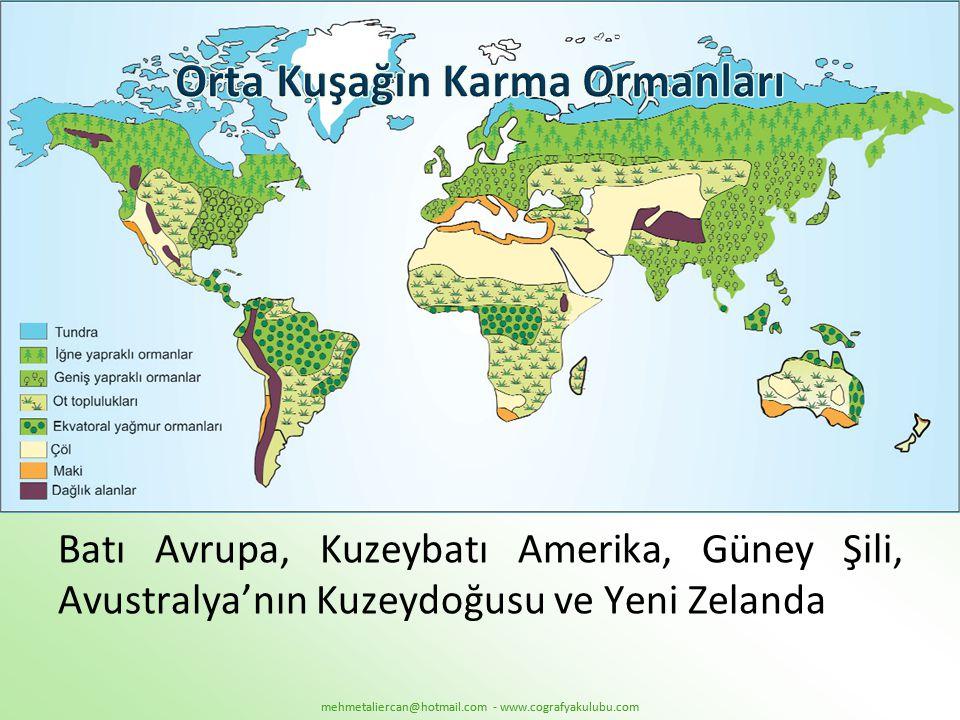 Batı Avrupa, Kuzeybatı Amerika, Güney Şili, Avustralya'nın Kuzeydoğusu ve Yeni Zelanda