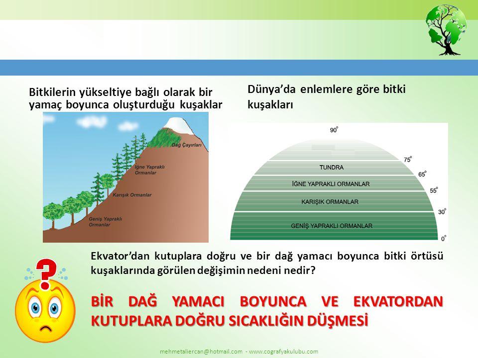 mehmetaliercan@hotmail.com - www.cografyakulubu.com Bitkilerin yükseltiye bağlı olarak bir yamaç boyunca oluşturduğu kuşaklar Dünya'da enlemlere göre