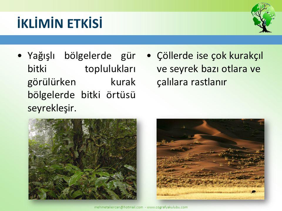 mehmetaliercan@hotmail.com - www.cografyakulubu.com İKLİMİN ETKİSİ •Yağışlı bölgelerde gür bitki toplulukları görülürken kurak bölgelerde bitki örtüsü