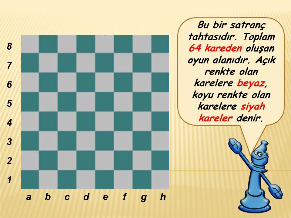 Bu bir satranç tahtasıdır.Toplam 64 kareden oluşan oyun alanıdır.