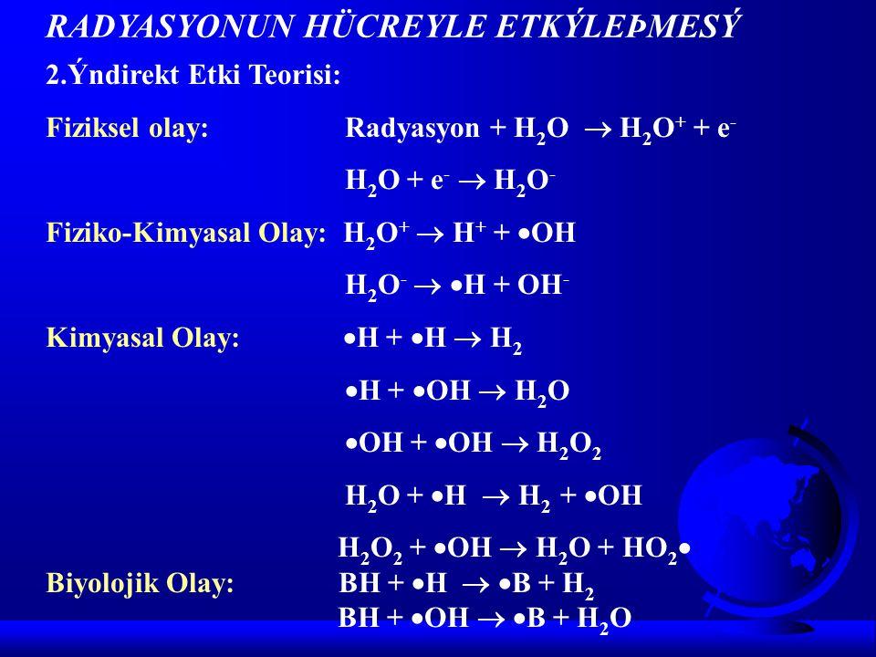 2.Ýndirekt Etki Teorisi: O 2 +  H  HO 2  2HO 2   H 2 O 2 + O 2  B + O 2  BO 2  (Organik peroksit radikali) BO 2  radikali diðer organik biyolojik moleküllerle pek çok zincirleme reaksiyon yapabilir.