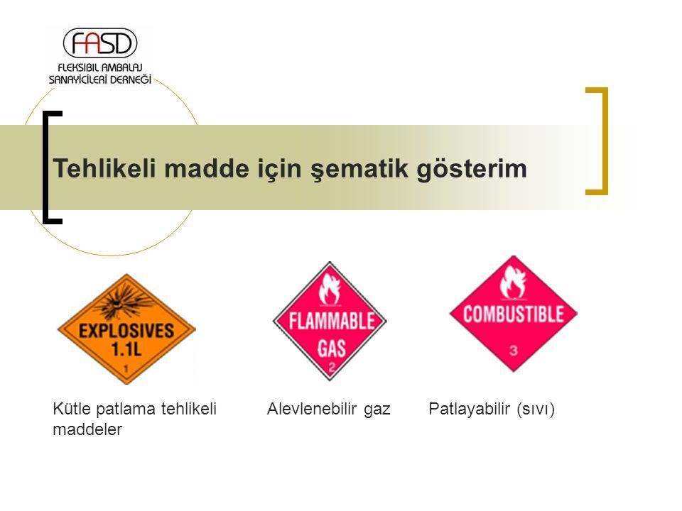 Tehlikeli madde için şematik gösterim Kütle patlama tehlikeli maddeler Alevlenebilir gazPatlayabilir (sıvı)
