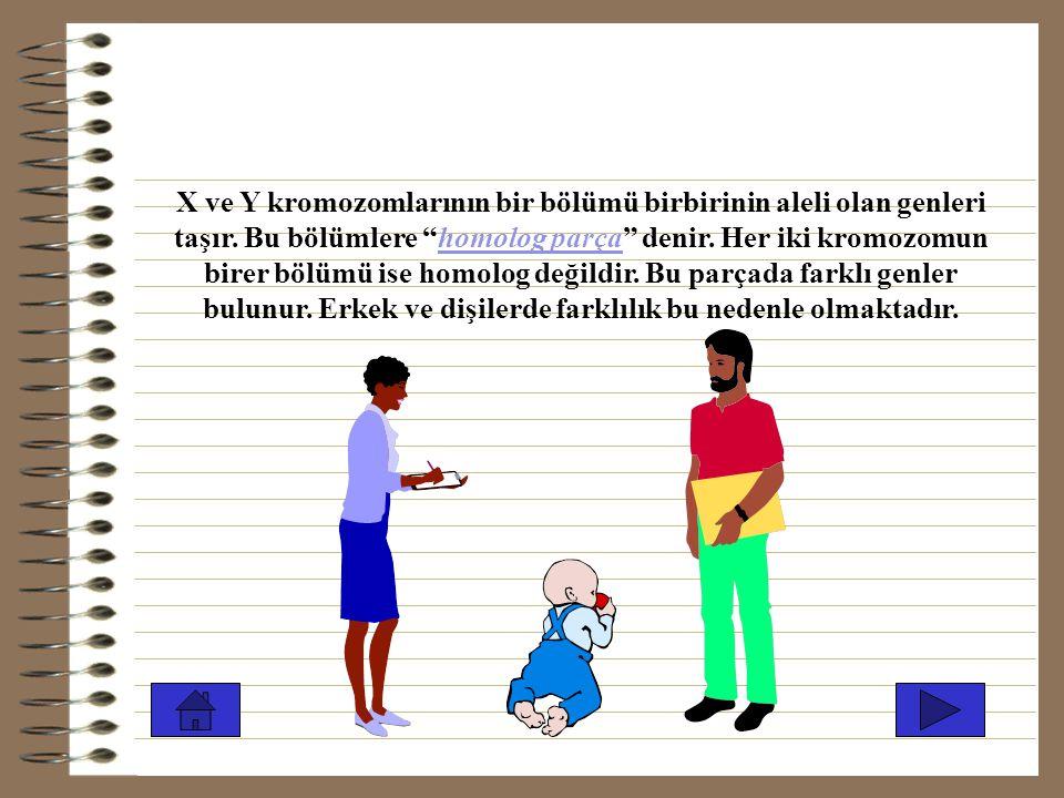 Mayoz bölünme ile kromozom sayısının yarıya düştüğünü öğrenmiştik. 46 kromozomu olan insan yumurtasında yalnız X kromozomu(22 otozom+X) varken; sperml