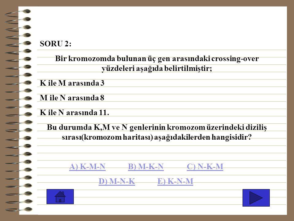 SORU 1: Yandaki canlıdan, bütün gamet çeşitlerinin oluşabilmesi için aşağıdakilerden hangisi olmalıdır? A) Bağımsız dağılım B) Mitoz bölünme C) Ayrılm