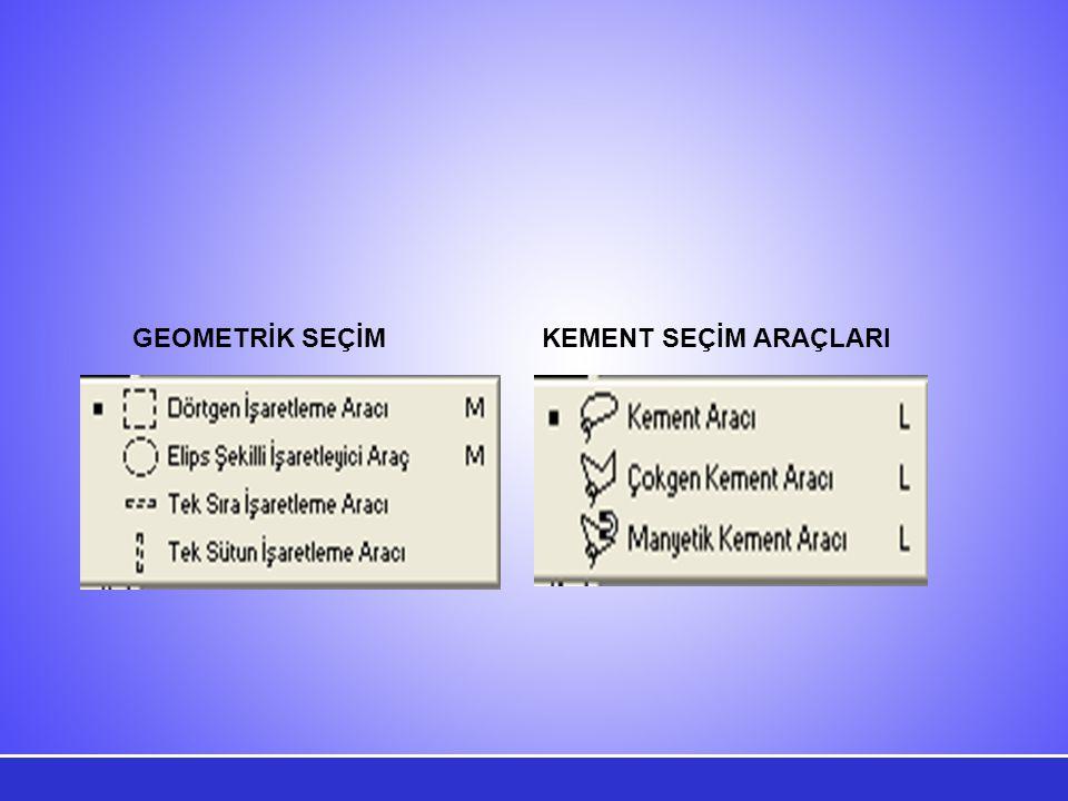 Aşağıda Dörtgen İşaretleme aracı kullanılarak resimden bir dikdörtgen alan seçilmiştir.