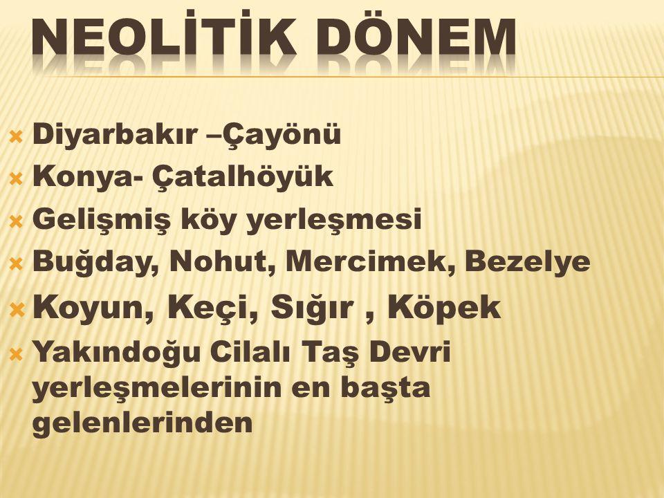  Diyarbakır –Çayönü  Konya- Çatalhöyük  Gelişmiş köy yerleşmesi  Buğday, Nohut, Mercimek, Bezelye  Koyun, Keçi, Sığır, Köpek  Yakındoğu Cilalı T