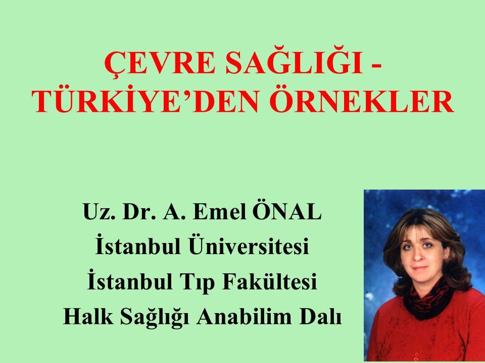 ÇEVRE SAĞLIĞI - TÜRKİYE'DEN ÖRNEKLER Uz. Dr. A. Emel ÖNAL İstanbul Üniversitesi İstanbul Tıp Fakültesi Halk Sağlığı Anabilim Dalı
