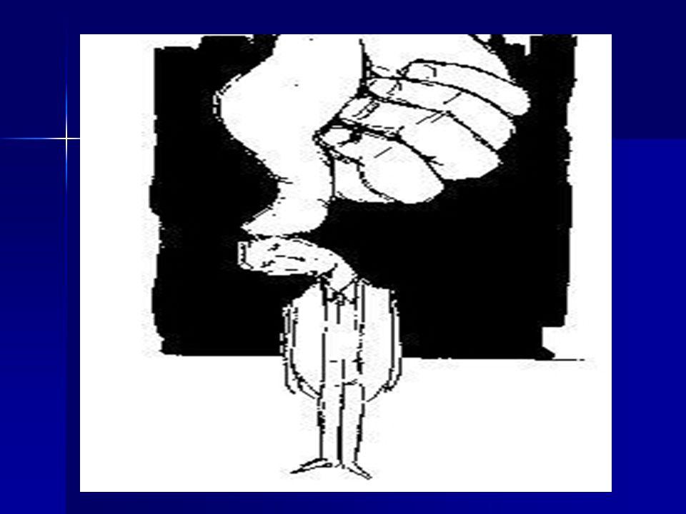 VESAYET DENETİMİ NEDİR??? Seçilmiş yerel yönetim organlarının,atanmış merkez organlarınca denetlenmesi durumudur. Osmanlıca da tabir etmek gerekirse,K