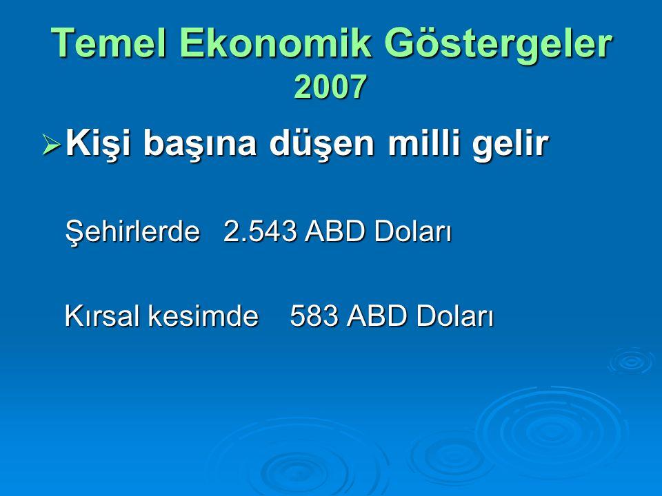 Temel Ekonomik Göstergeler 2007  Kişi başına düşen milli gelir Şehirlerde 2.543 ABD Doları Kırsal kesimde 583 ABD Doları Kırsal kesimde 583 ABD Doları
