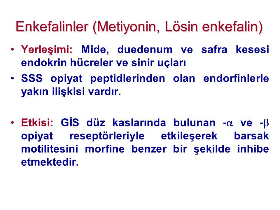Enkefalinler (Metiyonin, Lösin enkefalin) •Yerleşimi: Mide, duedenum ve safra kesesi endokrin hücreler ve sinir uçları •SSS opiyat peptidlerinden olan