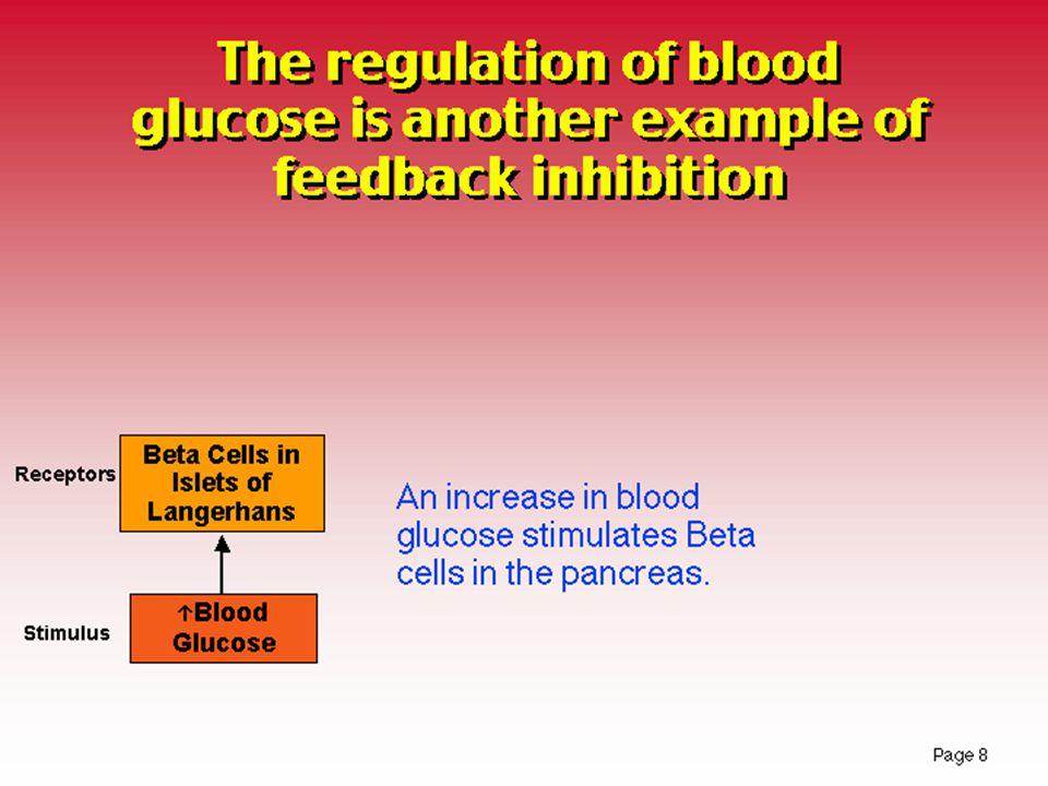 Somatostatin Etkileri: •Parakrin etki ile diğer adacık hücre hormonlarının salınımını inhibe eder.