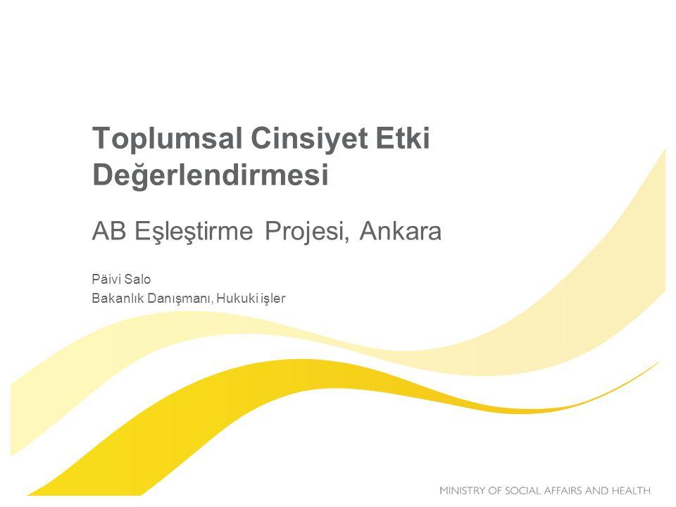 Toplumsal Cinsiyet Etki Değerlendirmesi AB Eşleştirme Projesi, Ankara Päivi Salo Bakanlık Danışmanı, Hukuki işler