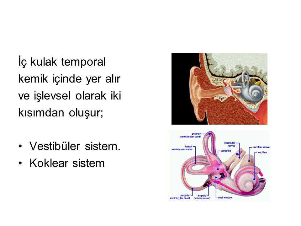 VESTİBÜLER SİSTEM: Vestibül'e açılan üç semisirküler kanal •superior, •posterior •lateral ile vestibülün içinde •utrikül (utriculus) •sakkül (sacculus) vestibüler sistemi oluşturular.