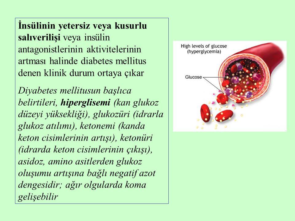 İnsülinin yetersiz veya kusurlu salıverilişi veya insülin antagonistlerinin aktivitelerinin artması halinde diabetes mellitus denen klinik durum ortay