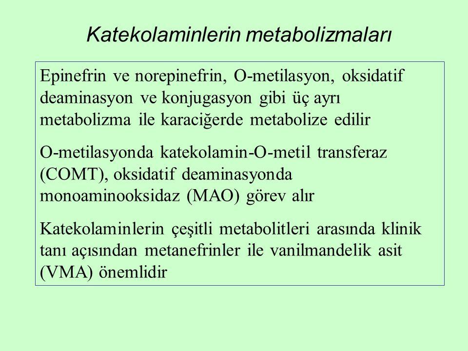 Epinefrin ve norepinefrin, O-metilasyon, oksidatif deaminasyon ve konjugasyon gibi üç ayrı metabolizma ile karaciğerde metabolize edilir O-metilasyond