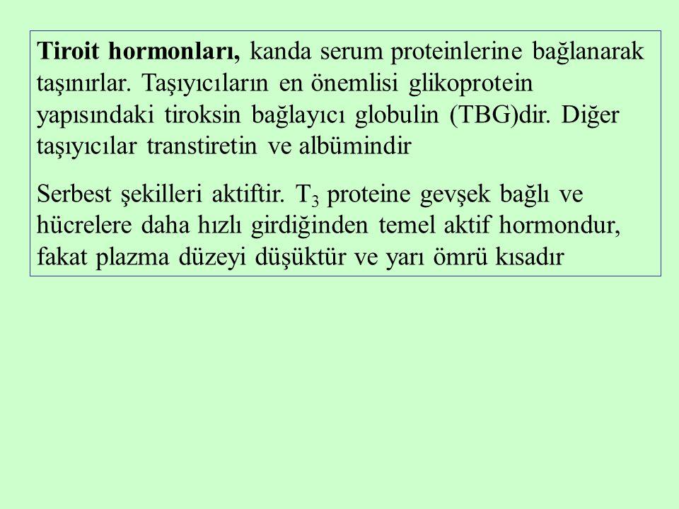 Tiroit hormonları, kanda serum proteinlerine bağlanarak taşınırlar. Taşıyıcıların en önemlisi glikoprotein yapısındaki tiroksin bağlayıcı globulin (TB