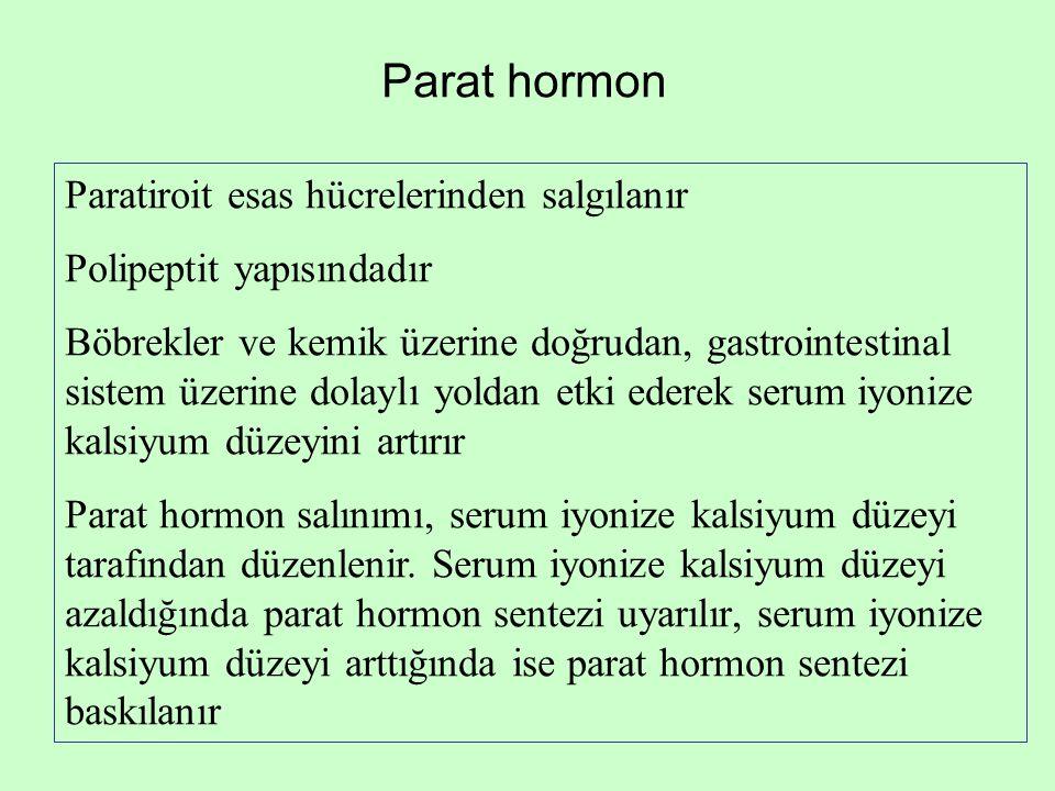 Parat hormon Paratiroit esas hücrelerinden salgılanır Polipeptit yapısındadır Böbrekler ve kemik üzerine doğrudan, gastrointestinal sistem üzerine dol