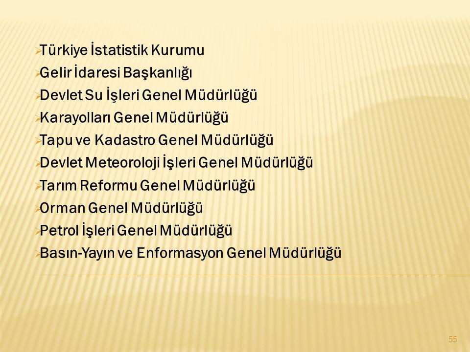  Türkiye İstatistik Kurumu  Gelir İdaresi Başkanlığı  Devlet Su İşleri Genel Müdürlüğü  Karayolları Genel Müdürlüğü  Tapu ve Kadastro Genel Müdür