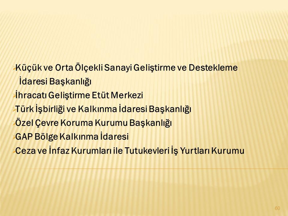  Küçük ve Orta Ölçekli Sanayi Geliştirme ve Destekleme İdaresi Başkanlığı  İhracatı Geliştirme Etüt Merkezi  Türk İşbirliği ve Kalkınma İdaresi Başkanlığı  Özel Çevre Koruma Kurumu Başkanlığı  GAP Bölge Kalkınma İdaresi  Ceza ve İnfaz Kurumları ile Tutukevleri İş Yurtları Kurumu 60