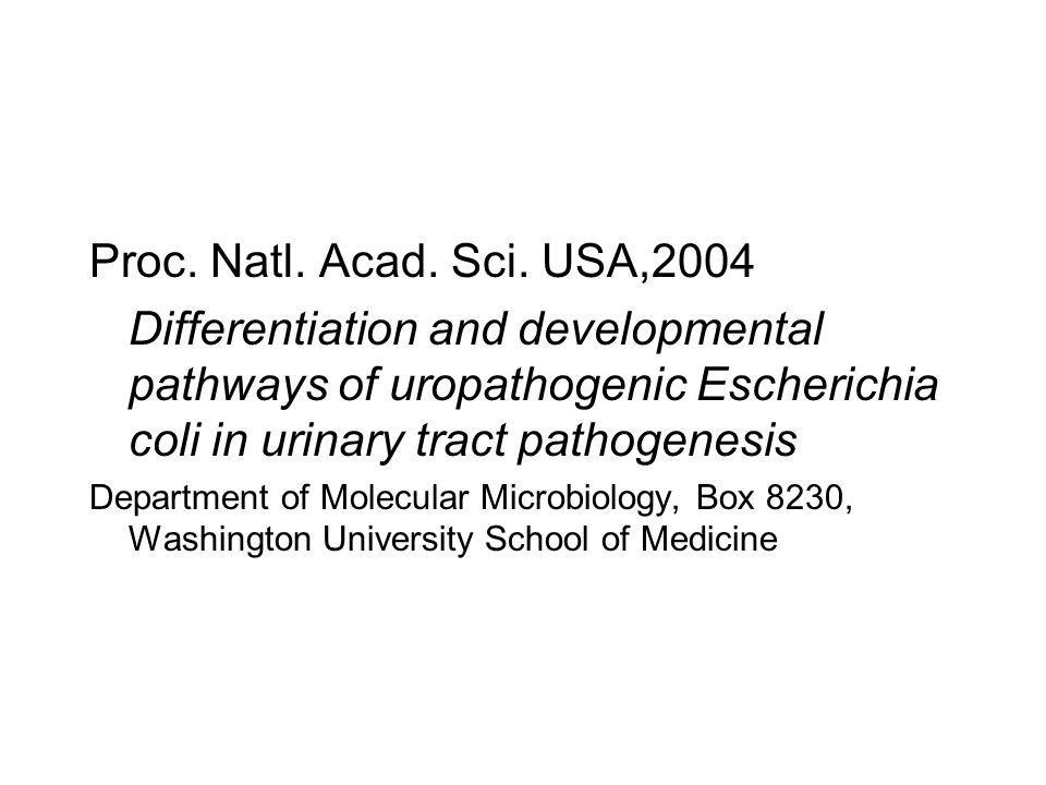 Proc. Natl. Acad. Sci. USA,2004 Differentiation and developmental pathways of uropathogenic Escherichia coli in urinary tract pathogenesis Department