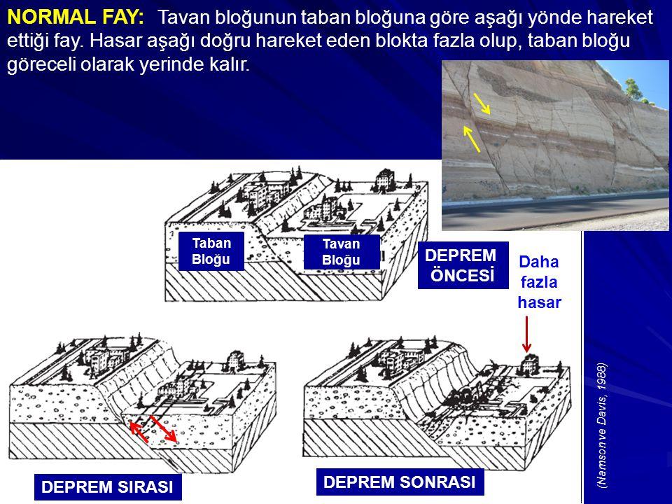 NORMAL FAY: Tavan bloğunun taban bloğuna göre aşağı yönde hareket ettiği fay.