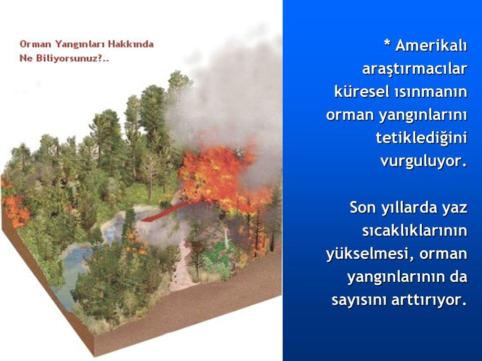 * Amerikalı araştırmacılar küresel ısınmanın orman yangınlarını tetiklediğinivurguluyor. Son yıllarda yaz sıcaklıklarının yükselmesi, orman yangınları