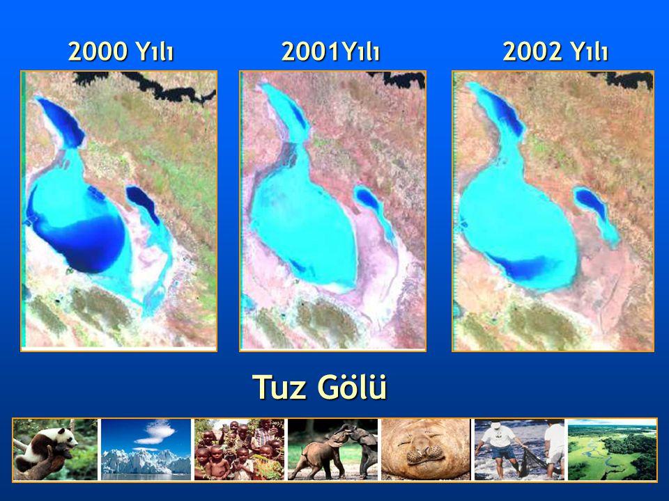 2000 Yılı Tuz Gölü 2001Yılı 2002 Yılı