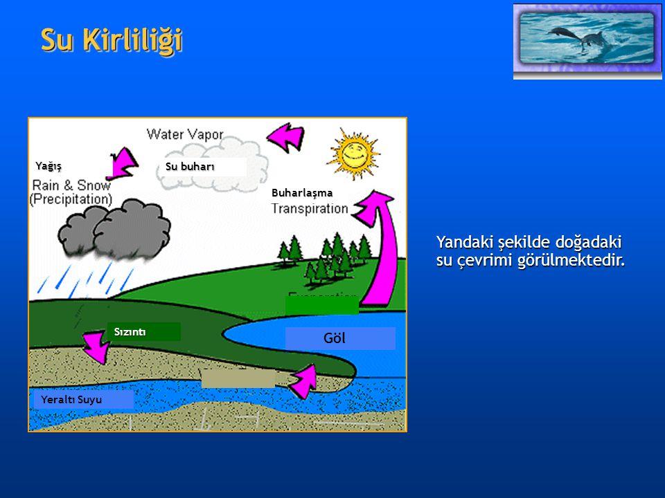 Su Kirliliği Su Kirliliği Su buharı Yağış Buharlaşma Buharlaşma Göl Yeraltı Suyu Sızıntı Yandaki şekilde doğadaki su çevrimi görülmektedir.