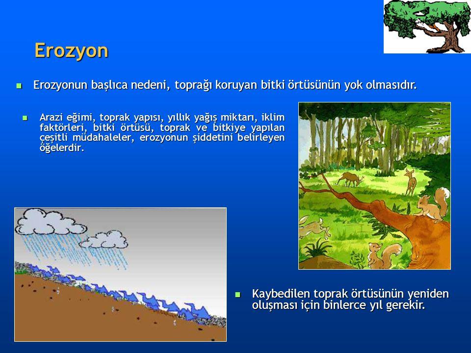 Erozyon Erozyon  Arazi eğimi, toprak yapısı, yıllık yağış miktarı, iklim faktörleri, bitki örtüsü, toprak ve bitkiye yapılan çeşitli müdahaleler, ero
