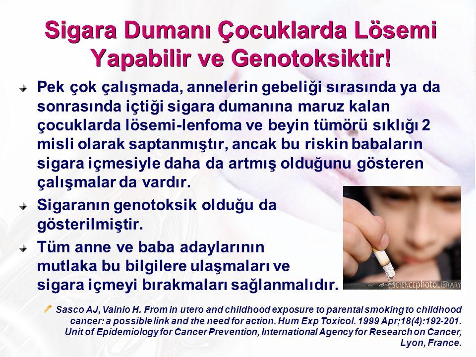 Pek çok çalışmada, annelerin gebeliği sırasında ya da sonrasında içtiği sigara dumanına maruz kalan çocuklarda lösemi-lenfoma ve beyin tümörü sıklığı