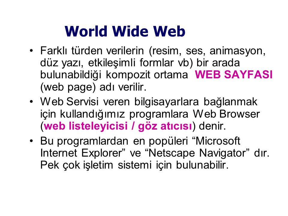 World Wide Web •Farklı türden verilerin (resim, ses, animasyon, düz yazı, etkileşimli formlar vb) bir arada bulunabildiği kompozit ortama WEB SAYFASI (web page) adı verilir.