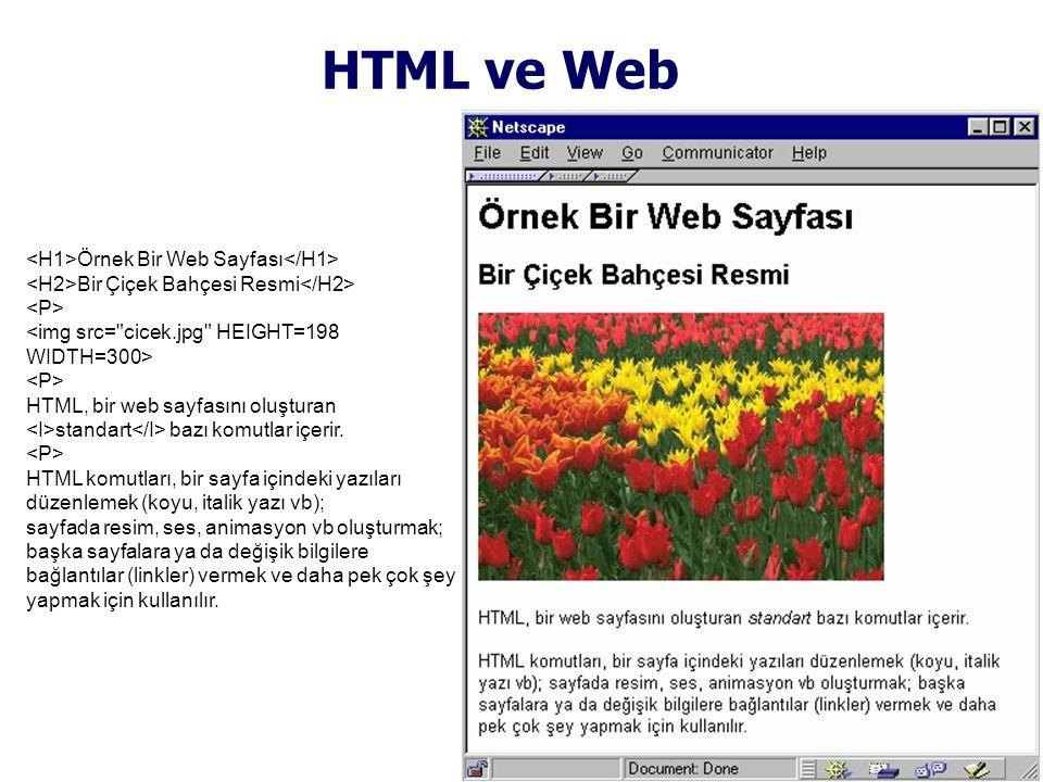 HTML ve Web Örnek Bir Web Sayfası Bir Çiçek Bahçesi Resmi HTML, bir web sayfasını oluşturan standart bazı komutlar içerir.