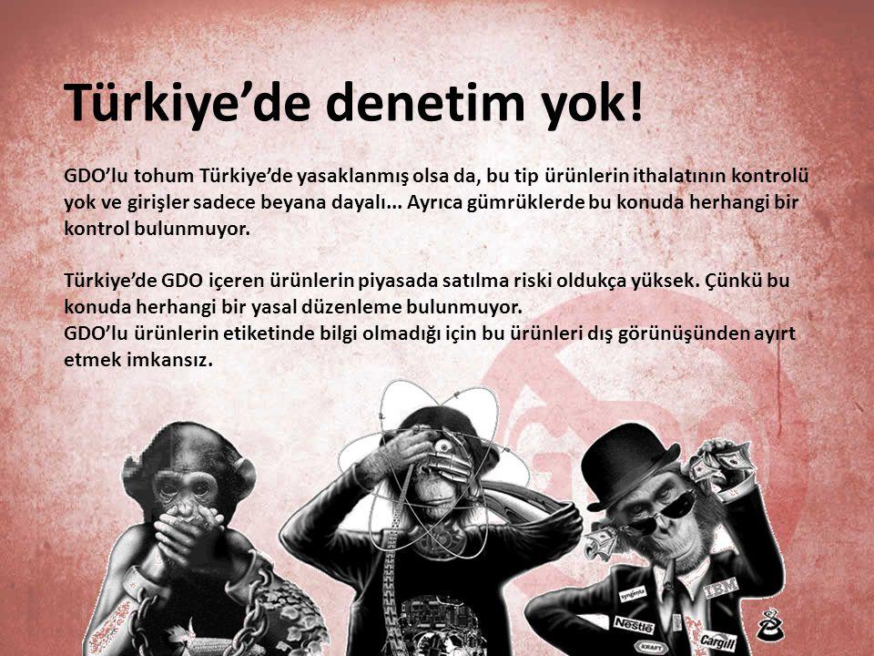 Türkiye'de denetim yok! GDO'lu tohum Türkiye'de yasaklanmış olsa da, bu tip ürünlerin ithalatının kontrolü yok ve girişler sadece beyana dayalı... Ayr