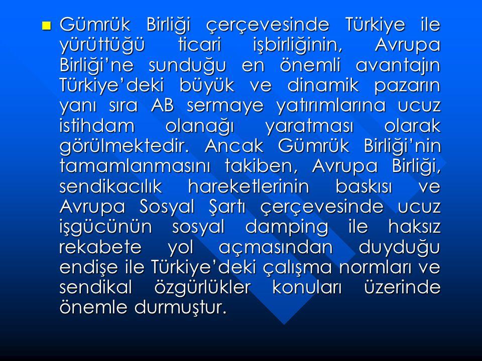  Gümrük Birliği çerçevesinde Türkiye ile yürüttüğü ticari işbirliğinin, Avrupa Birliği'ne sunduğu en önemli avantajın Türkiye'deki büyük ve dinamik p