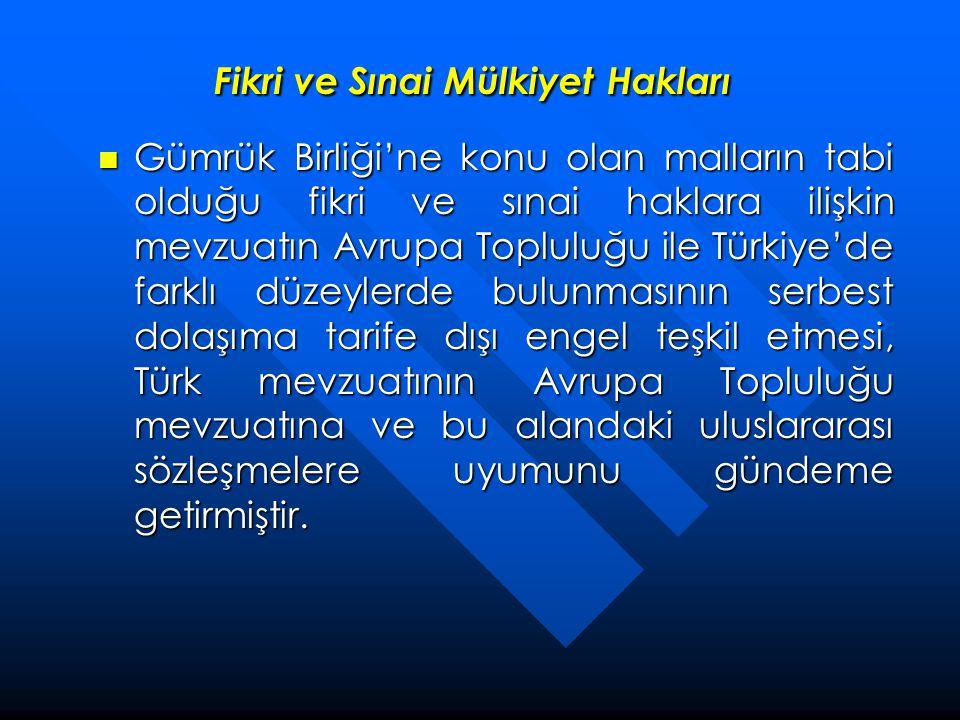 Fikri ve Sınai Mülkiyet Hakları  Gümrük Birliği'ne konu olan malların tabi olduğu fikri ve sınai haklara ilişkin mevzuatın Avrupa Topluluğu ile Türki