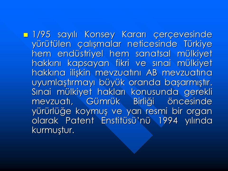  1/95 sayılı Konsey Kararı çerçevesinde yürütülen çalışmalar neticesinde Türkiye hem endüstriyel hem sanatsal mülkiyet hakkını kapsayan fikri ve sına