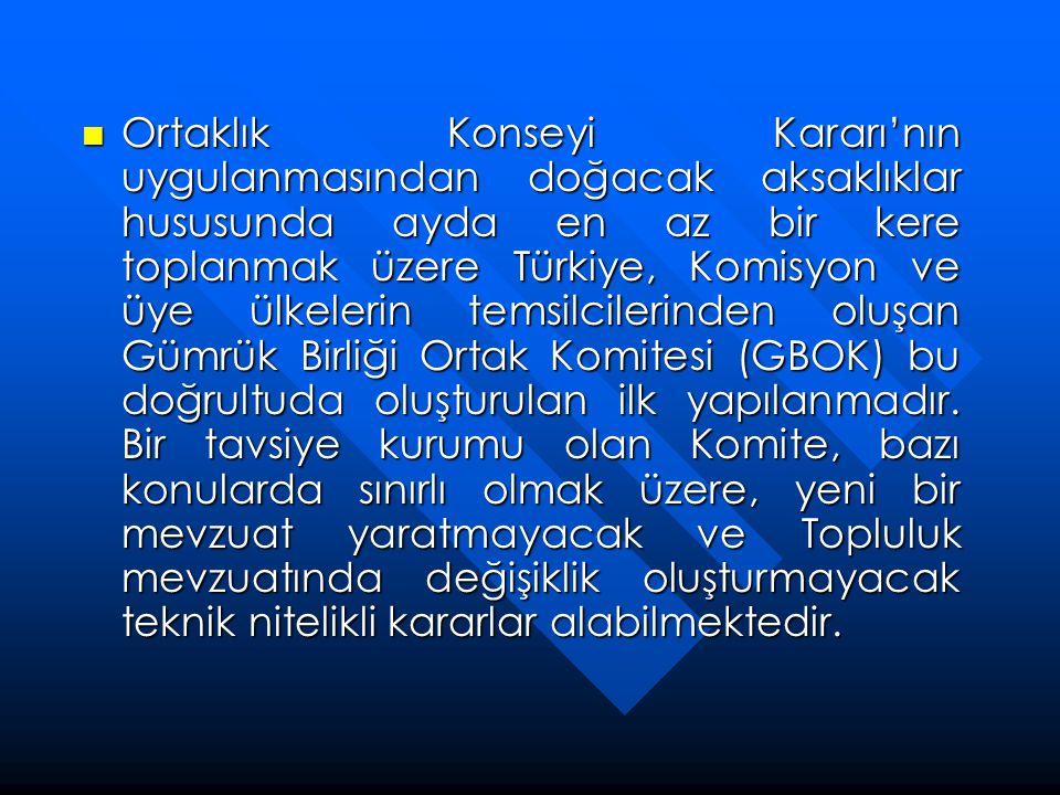  Ortaklık Konseyi Kararı'nın uygulanmasından doğacak aksaklıklar hususunda ayda en az bir kere toplanmak üzere Türkiye, Komisyon ve üye ülkelerin tem