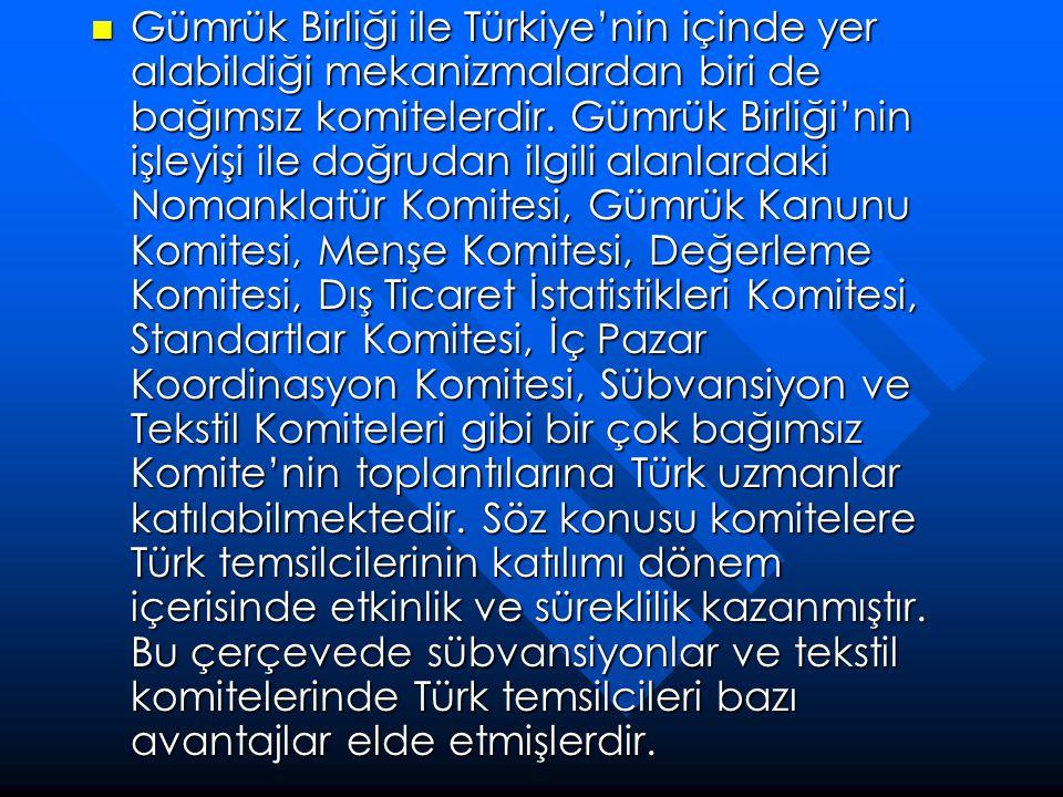 Gümrük Birliği ile Türkiye'nin içinde yer alabildiği mekanizmalardan biri de bağımsız komitelerdir. Gümrük Birliği'nin işleyişi ile doğrudan ilgili