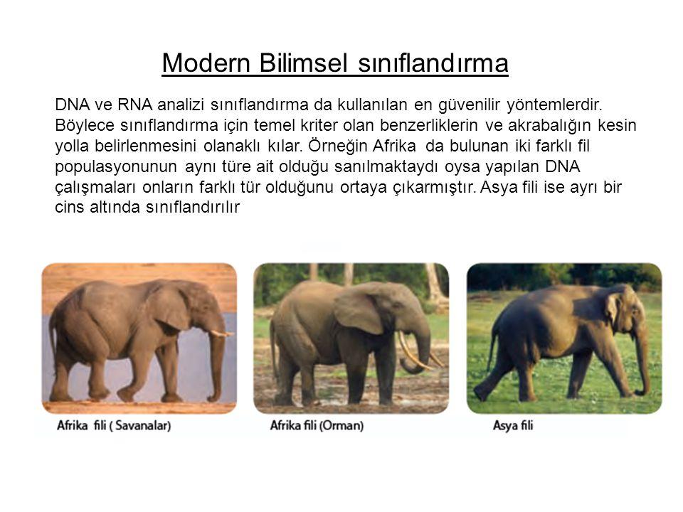Modern Bilimsel sınıflandırma DNA ve RNA analizi sınıflandırma da kullanılan en güvenilir yöntemlerdir. Böylece sınıflandırma için temel kriter olan b