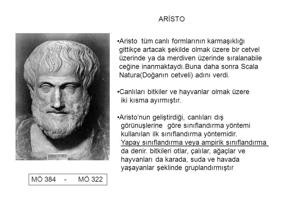 MÖ 384 - MÖ 322 ARİSTO •Aristo tüm canlı formlarının karmaşıklığı gittikçe artacak şekilde olmak üzere bir cetvel üzerinde ya da merdiven üzerinde sır