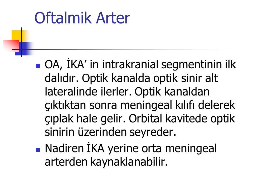 Oftalmik Arter  OA, İKA' in intrakranial segmentinin ilk dalıdır. Optik kanalda optik sinir alt lateralinde ilerler. Optik kanaldan çıktıktan sonra m