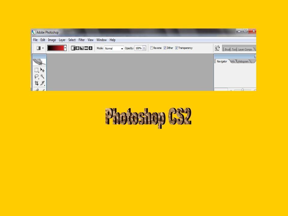 Grafik düzenleme yazılımları (Photo Editing Software), yeni bir resim oluşturmaktan daha çok var olan resimler üzerinde düzenlemeler yapmanıza yardımcı olan programlardır.
