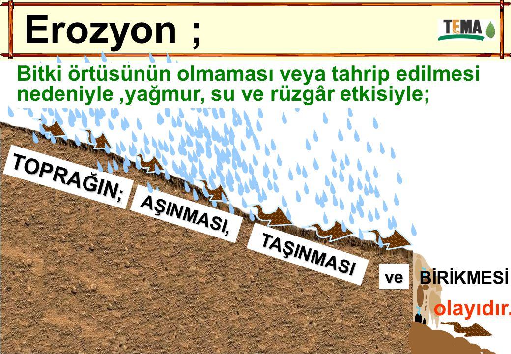 olayıdır. TOPRAĞIN ; ve TAŞINMASI AŞINMASI, BİRİKMESİ Erozyon ; Bitki örtüsünün olmaması veya tahrip edilmesi nedeniyle,yağmur, su ve rüzgâr etkisiyle