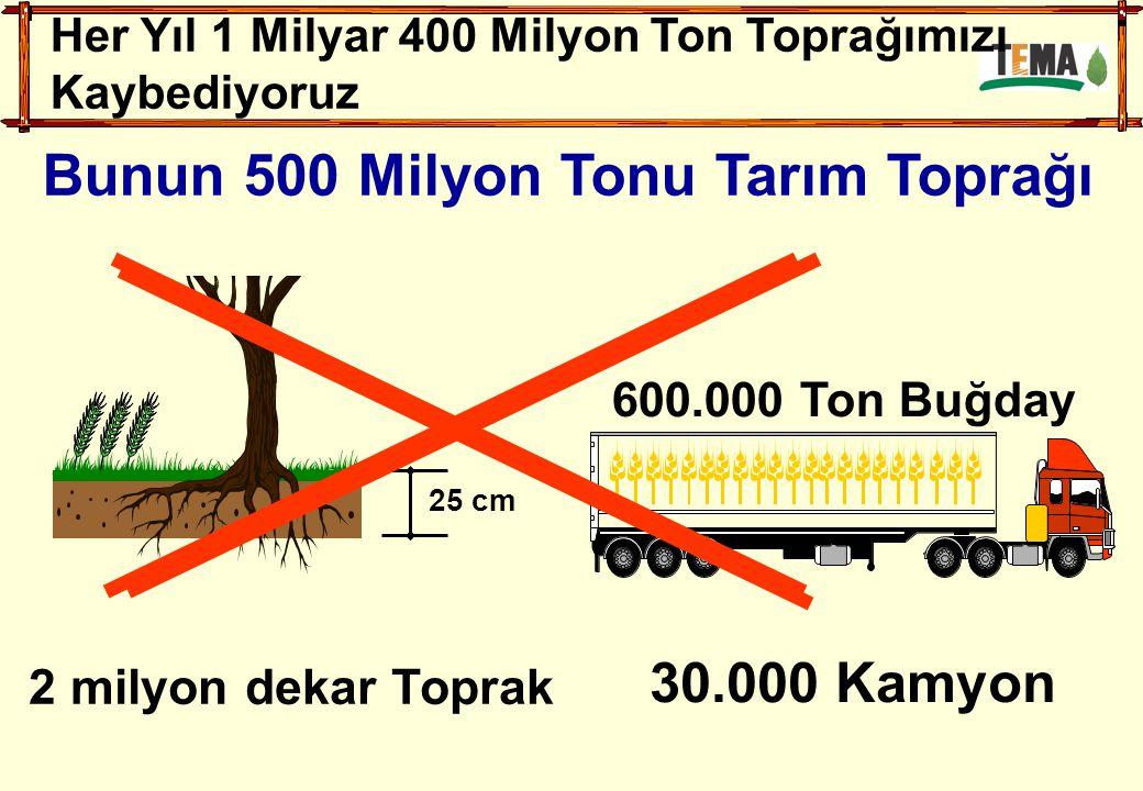 25 cm 2 milyon dekar Toprak 600.000 Ton Buğday 30.000 Kamyon Her Yıl 1 Milyar 400 Milyon Ton Toprağımızı Kaybediyoruz Bunun 500 Milyon Tonu Tarım Topr