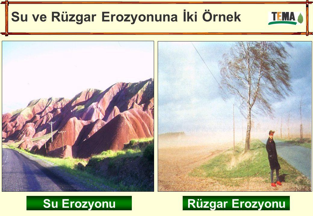 Su ve Rüzgar Erozyonuna İki Örnek Su ErozyonuRüzgar Erozyonu