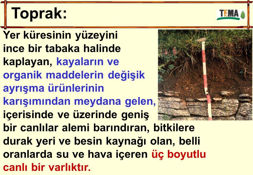 Toprak Erozyonu Çeşitleri 1.TEMEL EROZYON ÇEŞİTLERİ a.
